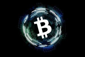 etabliertes Mitglied bei Bitcoin Trader